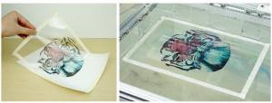 フィルムに印刷して水面に浮かべる
