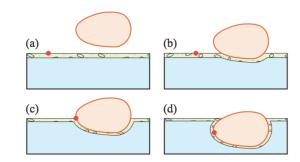 水圧転写プリントの概念