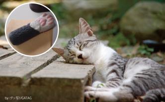 猫の手レンタル