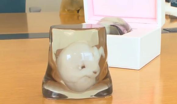 3Dプリンターで胎児を作る