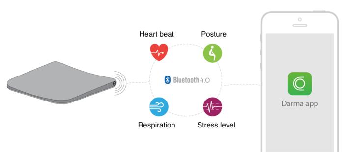 心電図や呼吸波形、ストレスや姿勢をチェック