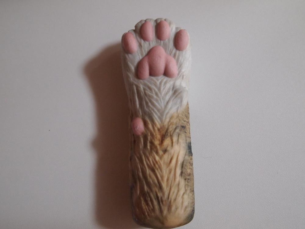 トラ猫の手
