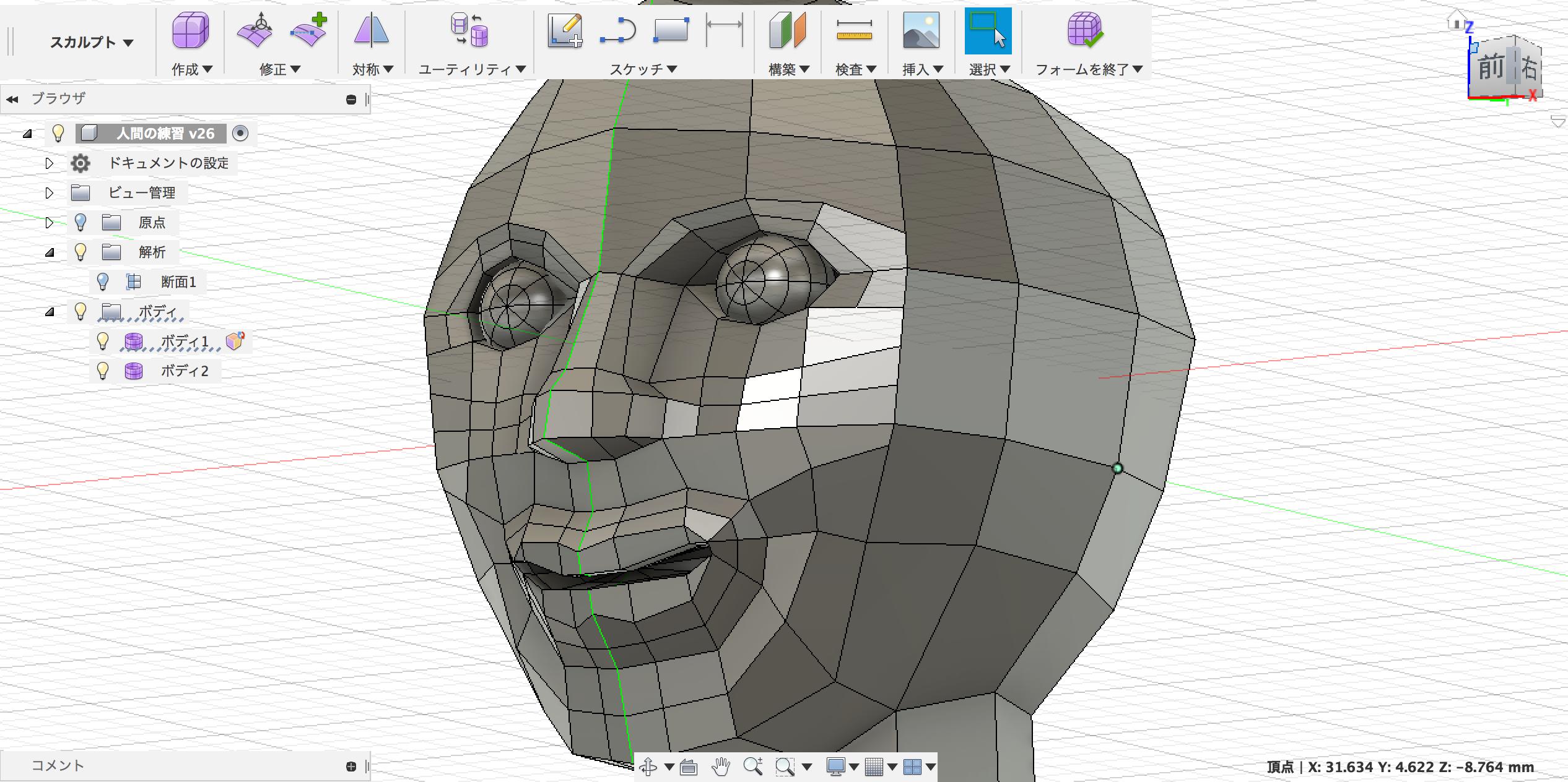 頭部の基本的な形
