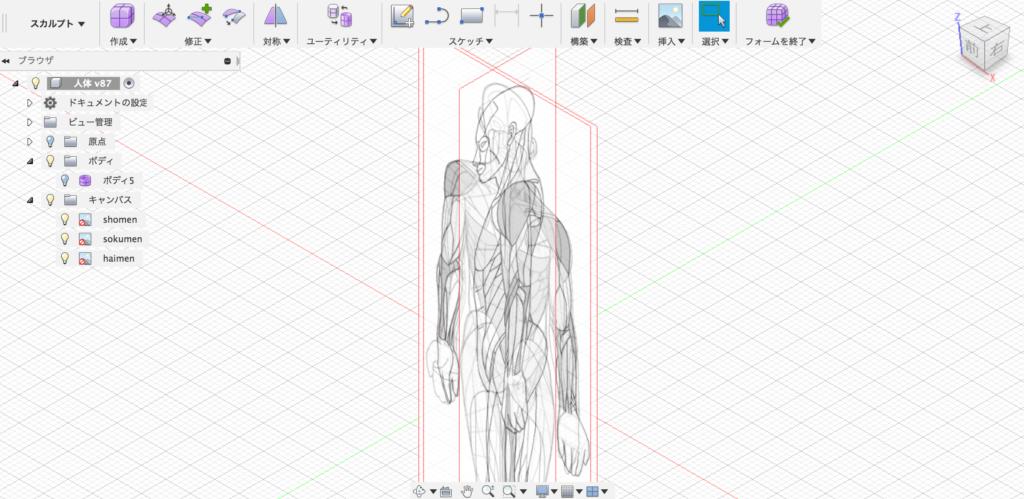 Fusion360の挿入で、前後と側面の骨格図を配置する