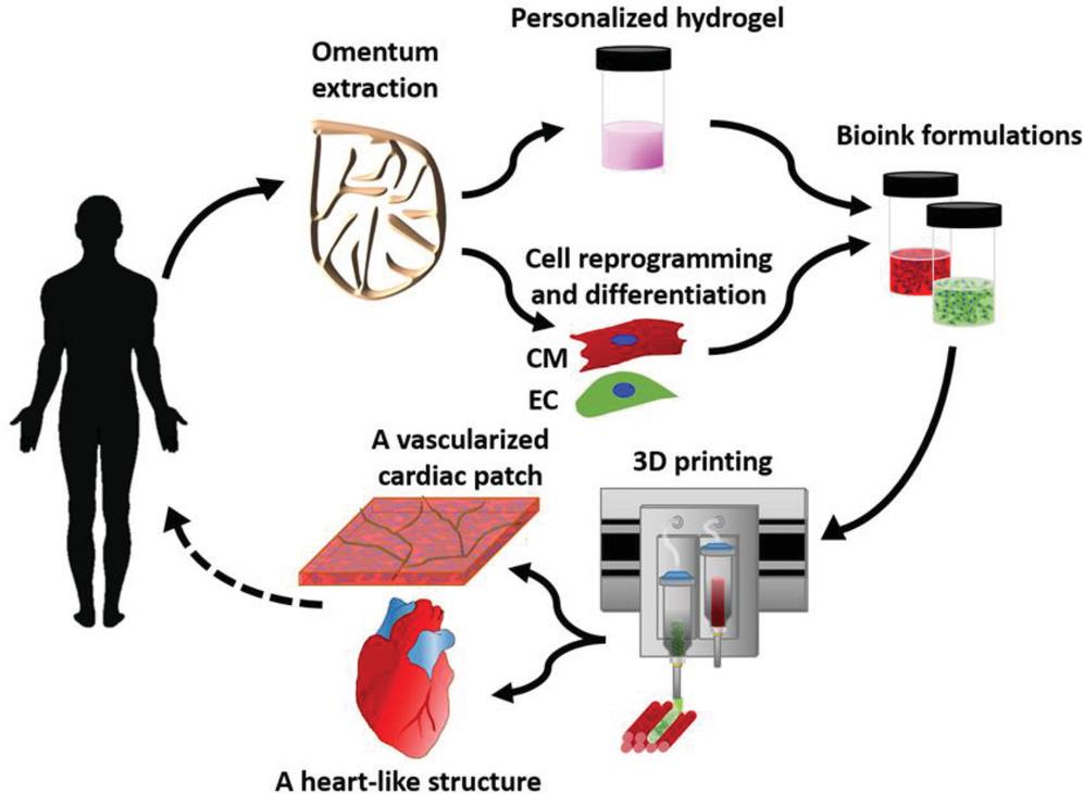 心臓の3Dプリントのプロセス 出典:テルアビブ大学