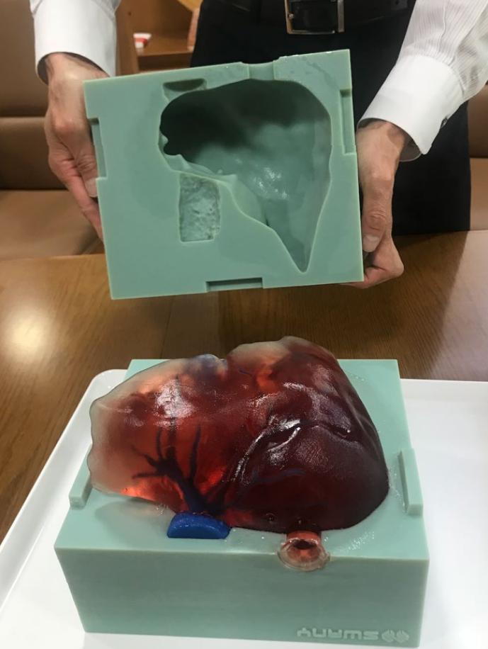 水分を含み、実際の臓器を忠実に再現した色調や質感を持つモデルを製作します